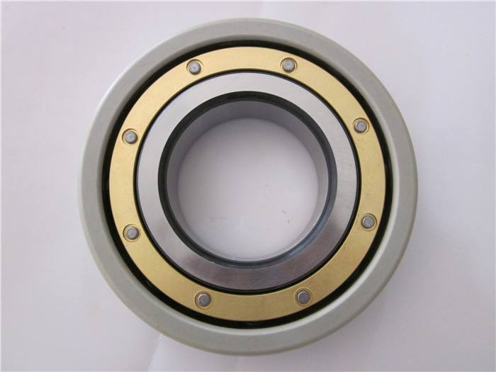 Toyana NJ318 cylindrical roller bearings